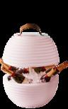The.Bowl Bluetooth Speaker Lamp & Wijnkoeler Nikki Amsterdam