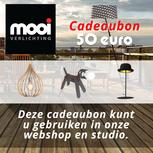 CADEAUBON - 50 EURO - MOOI VERLICHTING