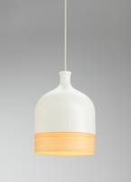 Demijohn hanglamp Vertigo Bird