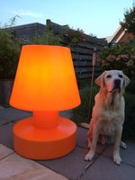 Portable lamp 90 cm met snoer buitenlamp Bloom!Holland